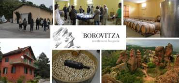 "Винарска изба ""Боровица"" гостува на EnjoyWine 18.10"