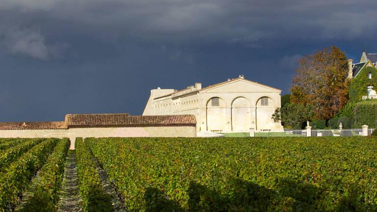 Колекционирането на вино като инвестиция