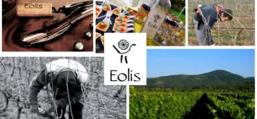 "Винарска изба ""Еолис"" гостува на Enjoywine 10.05"