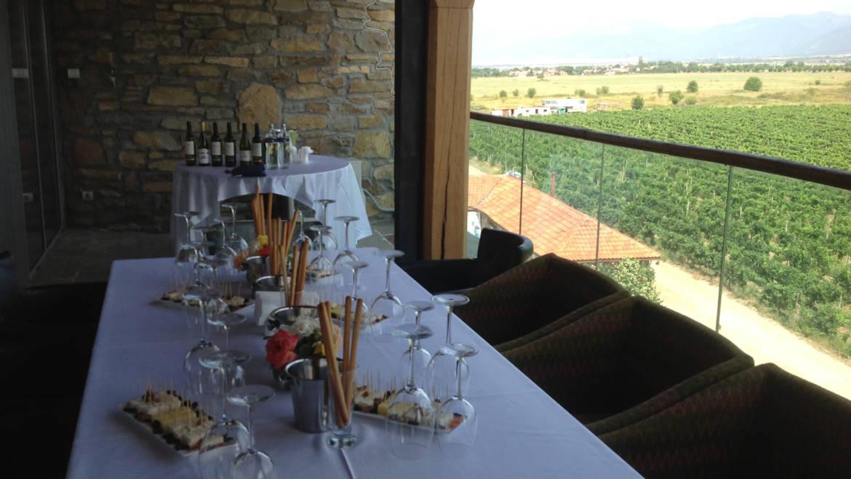 Wine tour Thracian plane