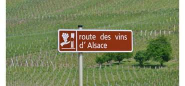 Дегустация на бели вина от Елзас