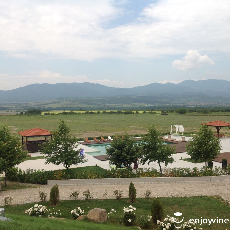 Wine tour Summer in the Valley