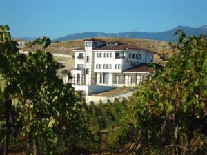 Вила Мелник в Нещо различно в света на виното