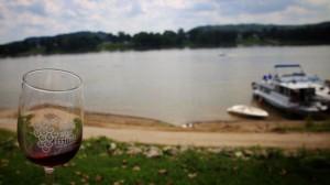 Дунавско винено изложение снимка 27 Юни 2015