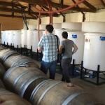 Виното на седем поколения