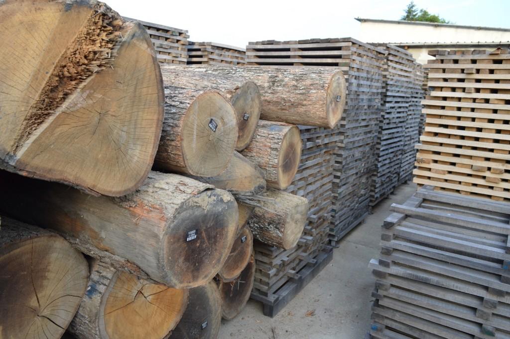 От един кубик на труп излизат две бъчви, само 20 - 30% от дървесината се оползотворява