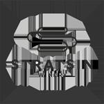 Stratsin_logo