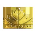 Tsarev_brod_logo150
