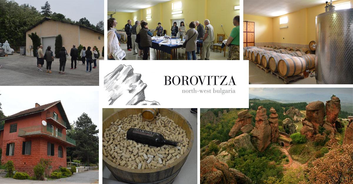 Винарска изба Боровица гостува на EnjoyWine