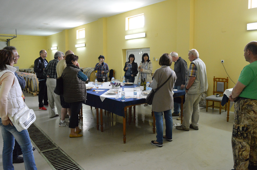 Посещение изба Боровица