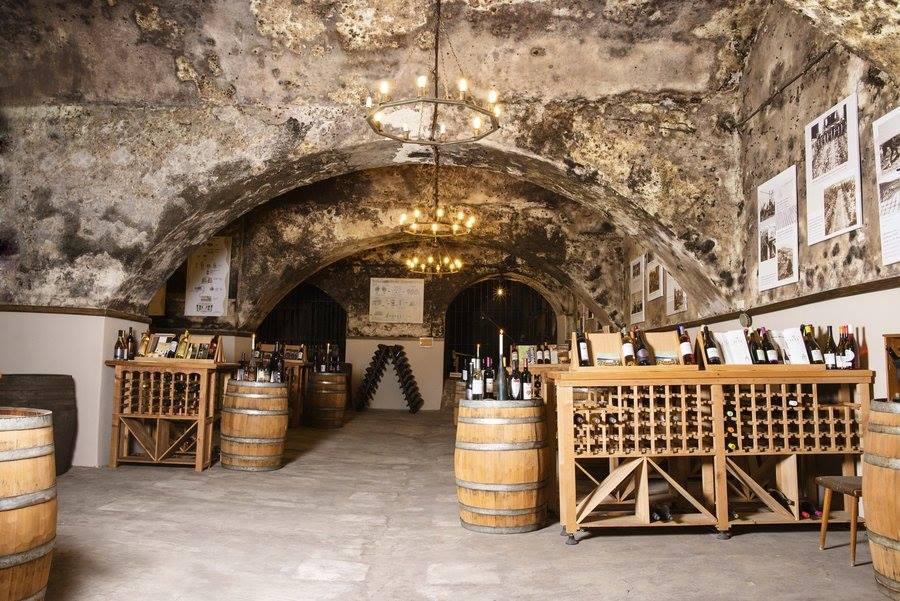 Приватизиран ли е музеят на виното в София